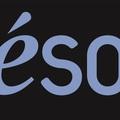Small logo seson