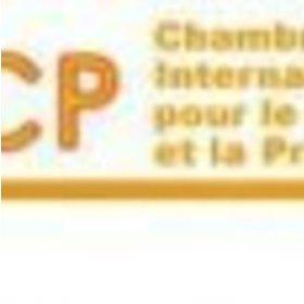 Big logo cicp 1