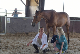 Big haute maison  centre equestre 036