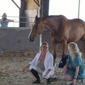 Small haute maison  centre equestre 036