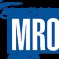 Small logo salon international mro arizona