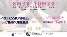 Big immobilier 291118