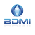 Big untouched logo bdmi