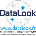 Big untouched logo datalook avec texte